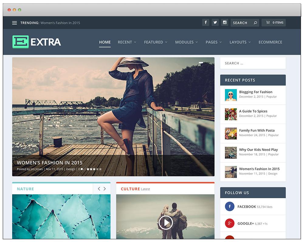 WordPress Temaları - Extra