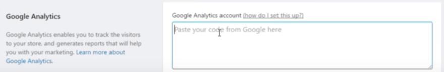 Google Analytics Shopify