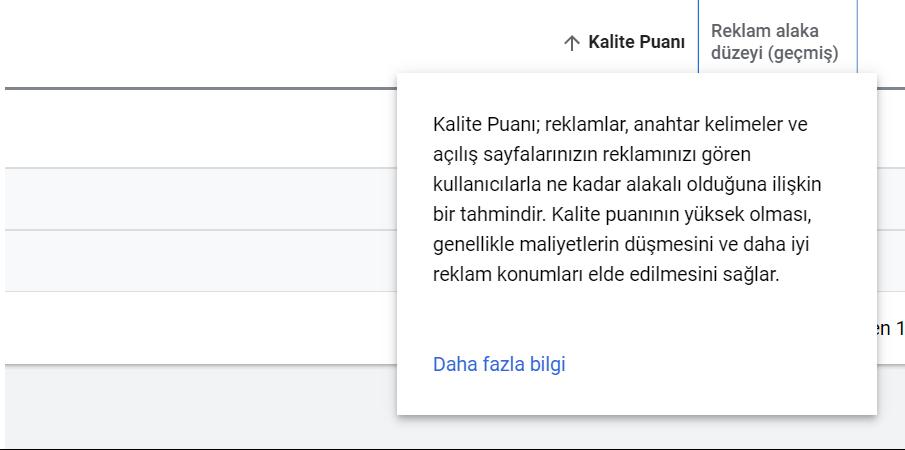 Google Ads Kalite Puanı Nedir?