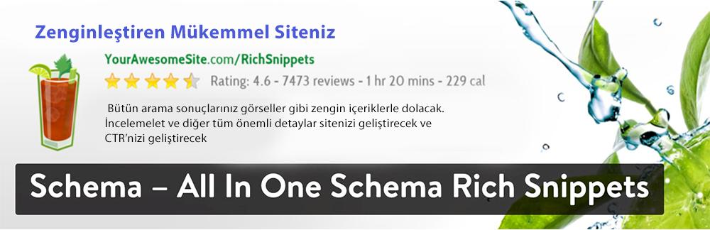 WordPress Yorum Eklentisi - Schema - All In One Schema Rich Snippets